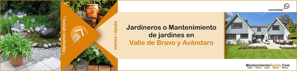 1132-Ya estamos en Valle de Bravo y Avándaro para dar mantenimiento a tu Hogar Oficina Jardin Terraza Alberca-03